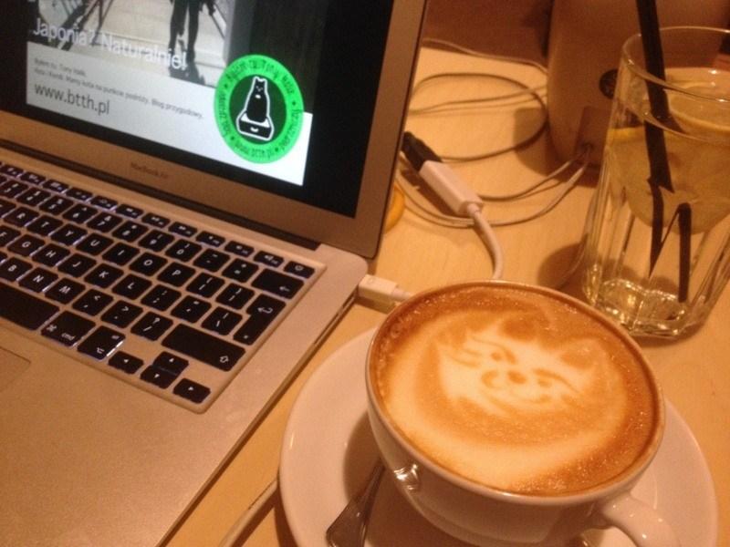 btth-kocia-kawiarnia-kociarnia