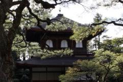 Ciekawe miejsca wJaponii: Srebrna Świątynia Ginkaku-ji (Kioto)