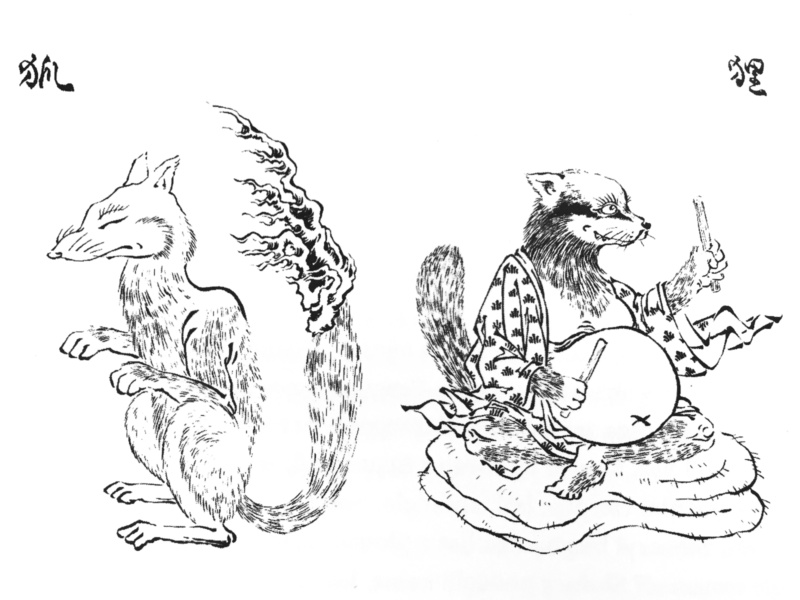 Kitsune (lis) itanuki (jenot) - dwa bardzo znane tajemnicze yokai / yōkai (rys. Shinonome Kijin)