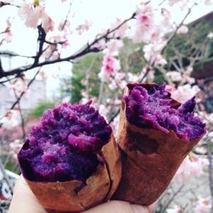 Pieczone słodkie ziemniaki beniimo (yaki-imo), Okinawa, Japonia