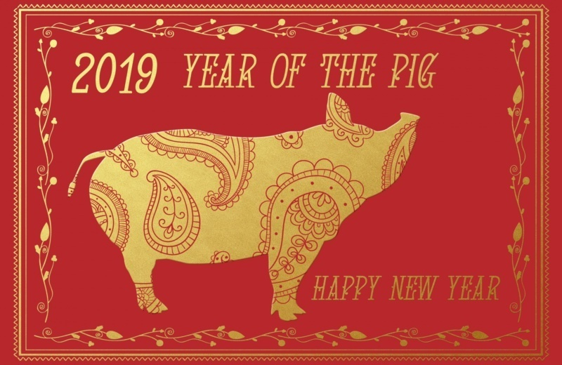 Happy New Chinese Year, Year of the Pig!