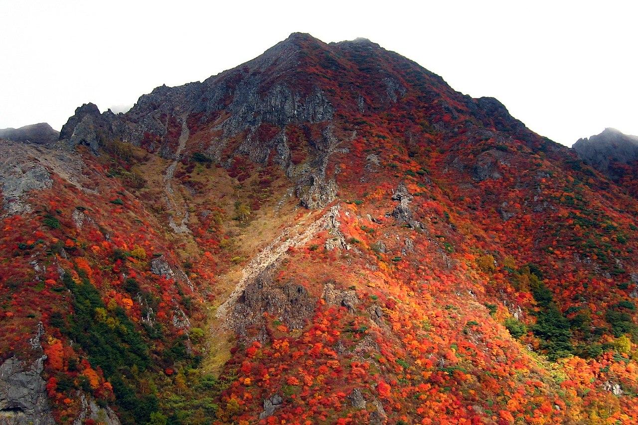 Czerwieniejące klony (momiji) na Ashidake (wulkany Nasu)