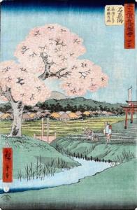 Hiroshige Utagawa: sakura - kwitnące wiśnie. Gdzie są kwitnące wiśnie wWarszawie?