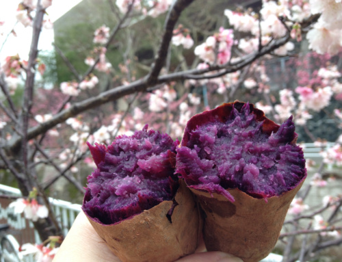 Japoński street food #2: przysmaki uliczne, którychtrzeba spróbować wJaponii