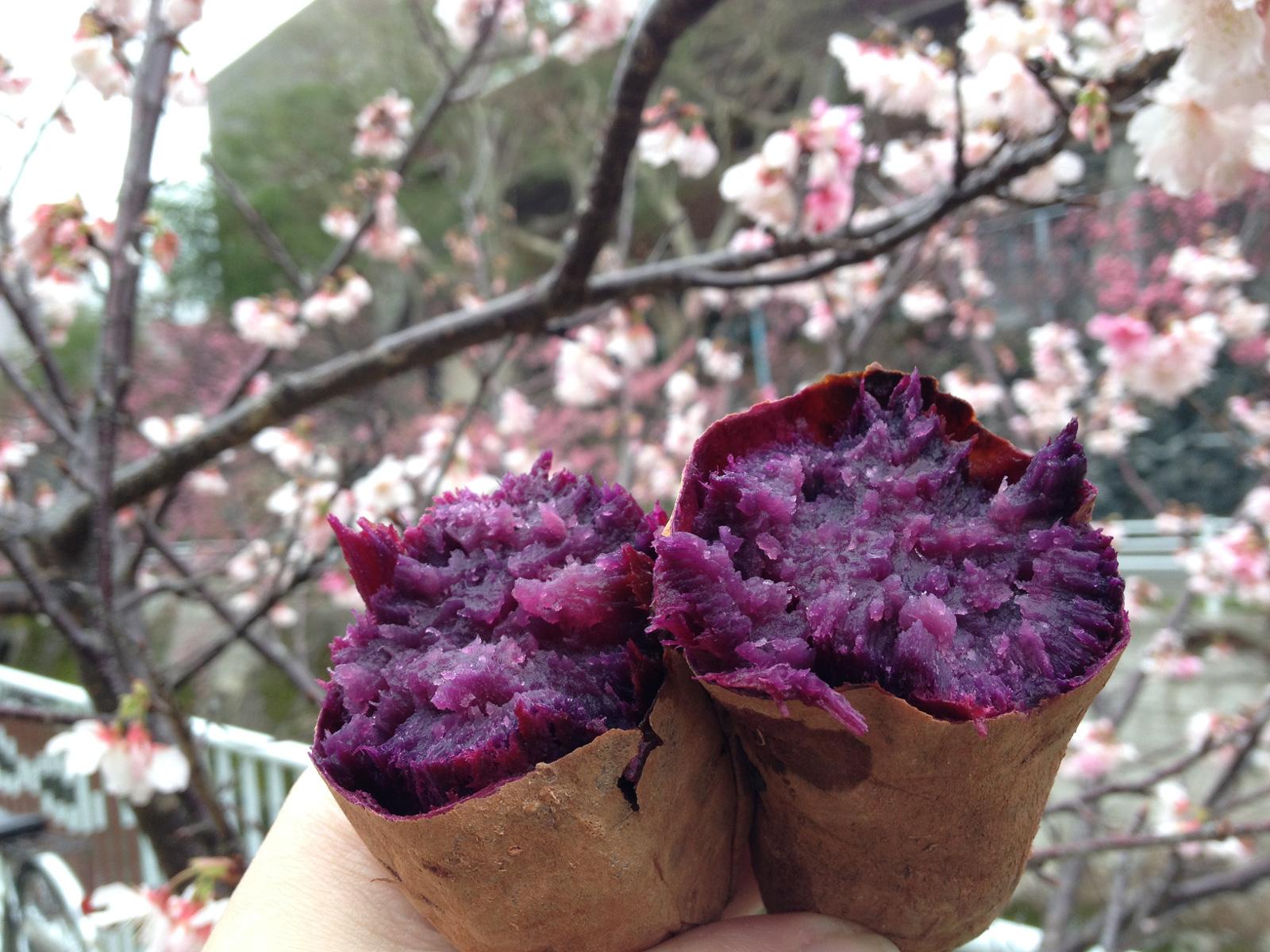 Street food w Japonii: pieczone beniimo (yakiimo)